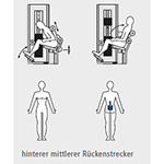 Rueckentrainer_1