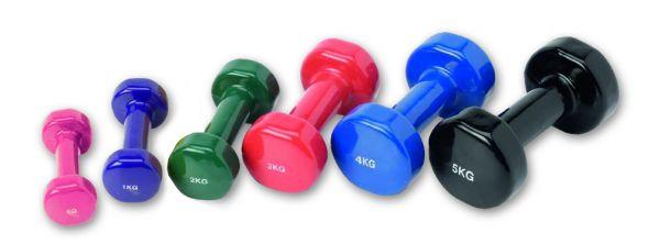 Trainingshanteln aus Gußeisen 2 x 4,0 kg