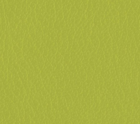 pandoria plus limone